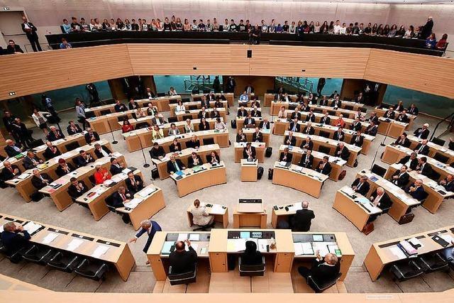 Landtags-Mitarbeiter sollen polizeilich überprüft werden – wegen der AfD