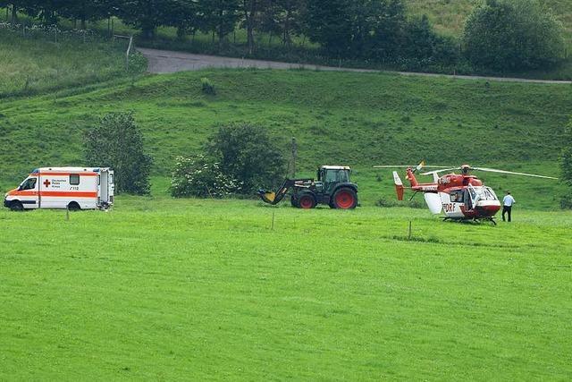 Wildgewordener Bulle verletzt Landwirt bei Titisee-Neustadt schwer