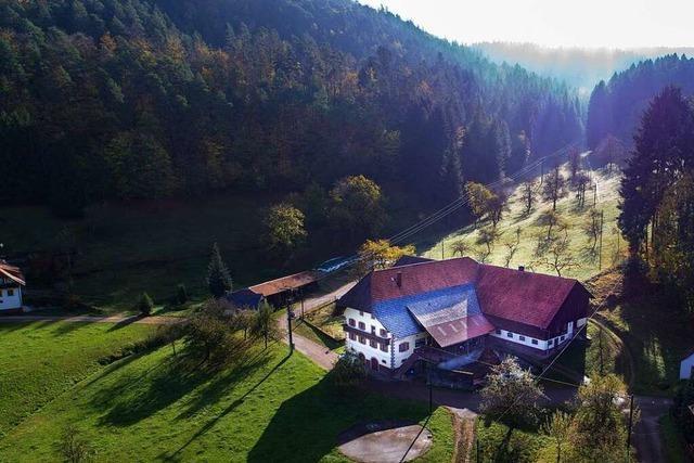 Der Fixenhof floriert dank seines Waldes – und seiner berührenden Geschichte
