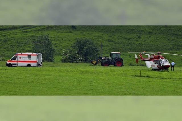 Bulle verletzt Landwirt lebensgefährlich