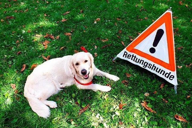 Diebe stehlen Ausrüstung der Rettungshundestaffel