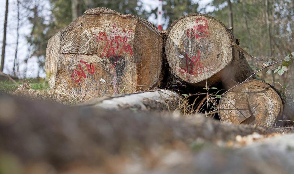 Zu wenig Wettbewerb gibt es nach Meinung des Kartellamtes auf dem Holzmarkt.     Foto: DPA