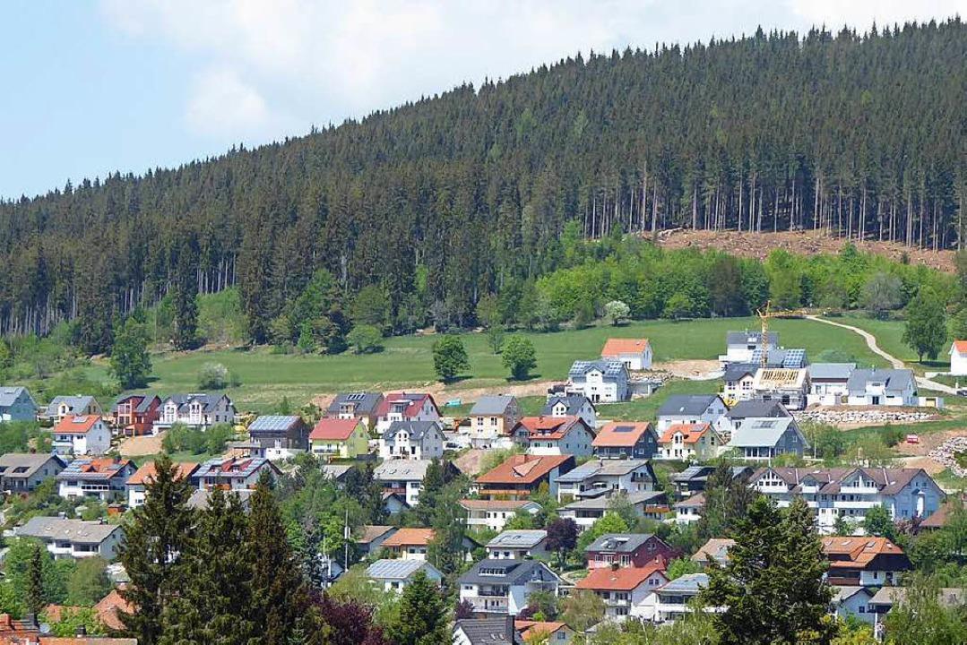Beliebt: das Neubaugebiet Fehrn in Neustadt    Foto: Peter Stellmach