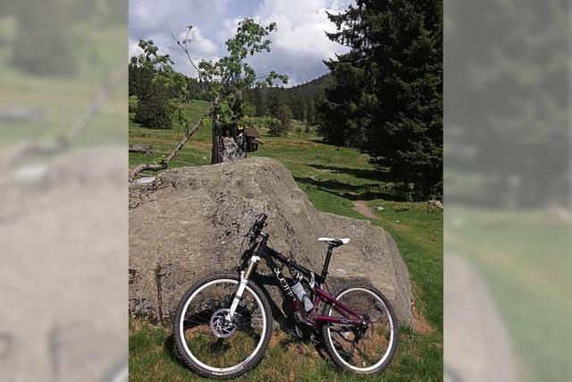 Gipfelstürmer im Schwarzwald