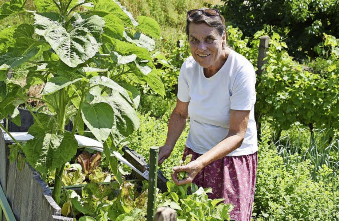 Christel Strauß-Röderer in ihrem heimi... wo sie unter anderem Salat anpflanzt.    Foto: Julia Trauden