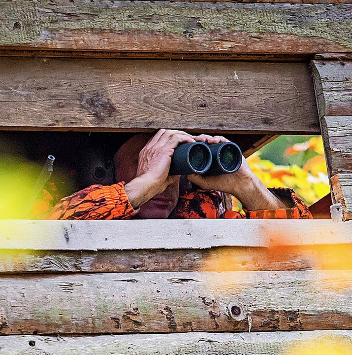 Die Jagdpächter halten auch die Hochsitze in Schuss.     Foto: dpa