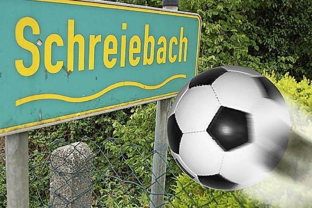 RHEINFÄLLE: Endstation Schreiebach?