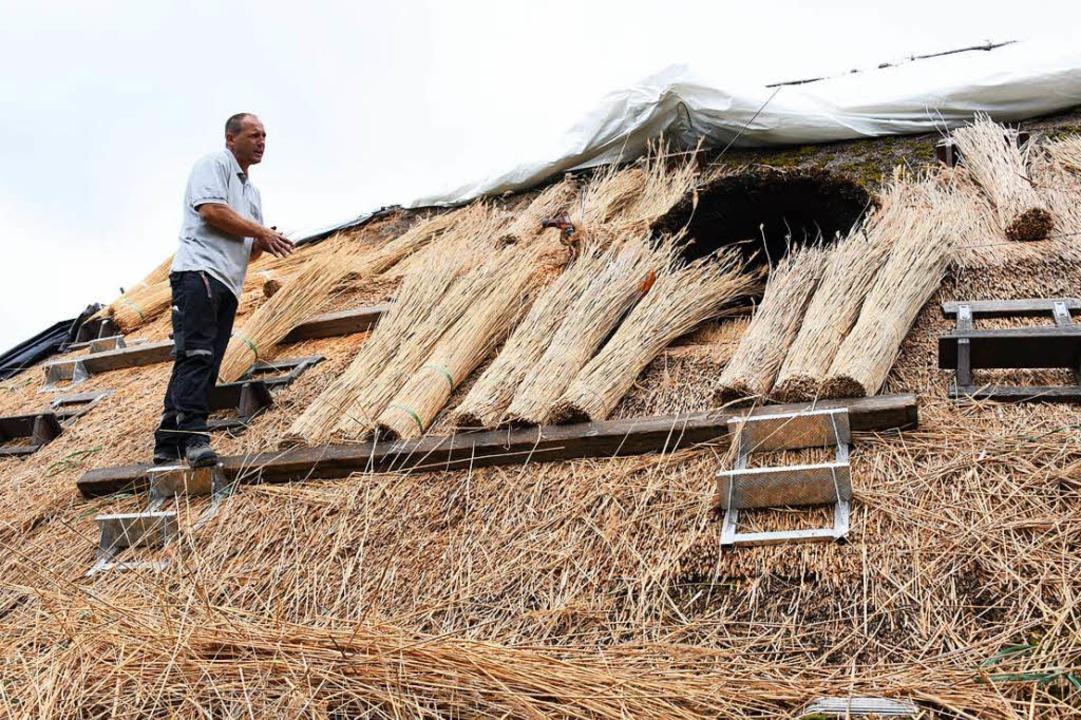 Ein Alter Bauernhof Im Wiesental Erhalt Ein Neues Reetdach Steinen