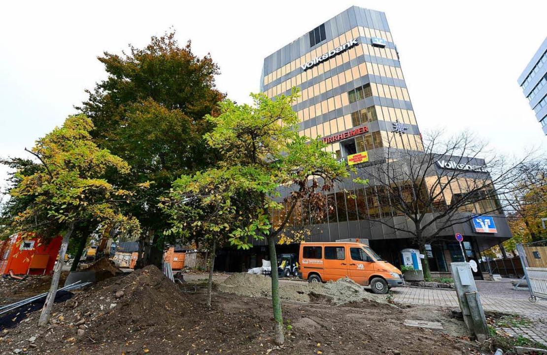 Für den geplanten Abriss mussten die Bäume rund um die alte Volksbank weichen.  | Foto: Ingo Schneider