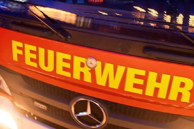 Holzstapel brennt – Polizei vermutet Brandstiftung
