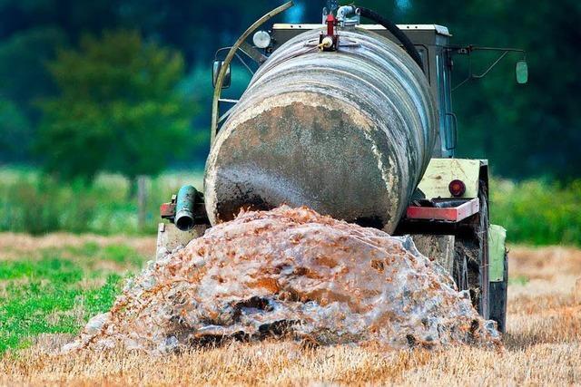 Europäischer Gerichtshof verurteilt Deutschland wegen Nitraten