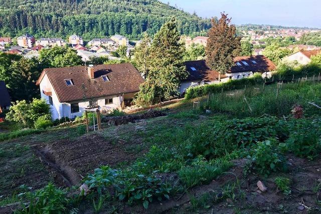 Altenberg bleibt in der Diskussion