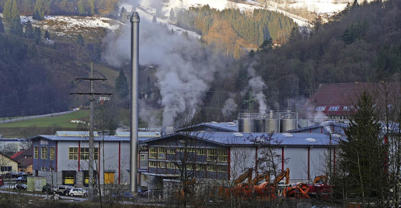 Die Ablüfte der Firma Celanese in Utze...chen Utzenfelder Bürgern zu schaffen.   | Foto: Dirk Sattelberger