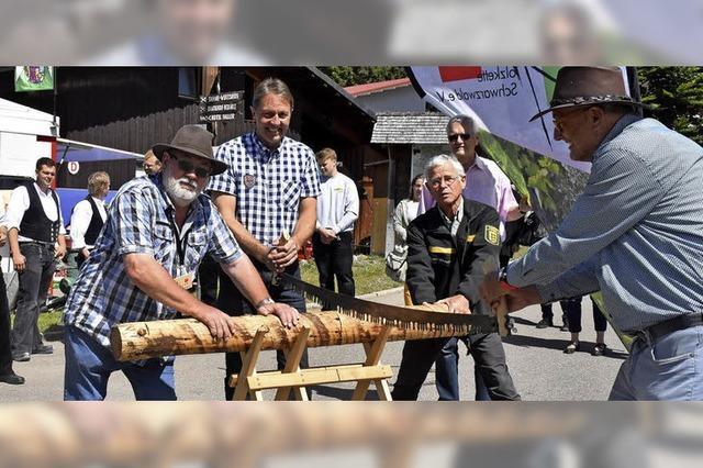 Holz zieht Besucher an