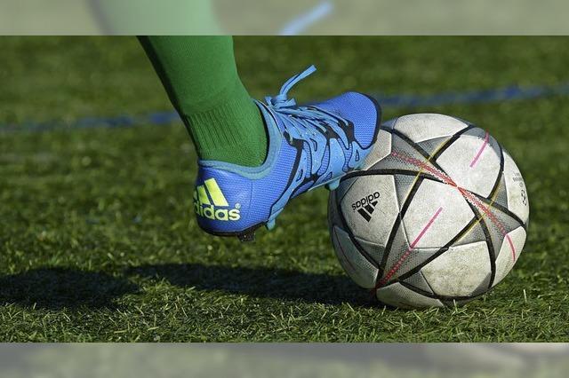 Fußballer wünschen sich Kunstrasen