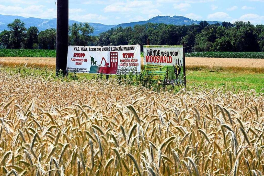 Die Pläne für den neuen Stadtteil Diet...Die Sorgen der Landwirte sind es auch.  | Foto: Kunz