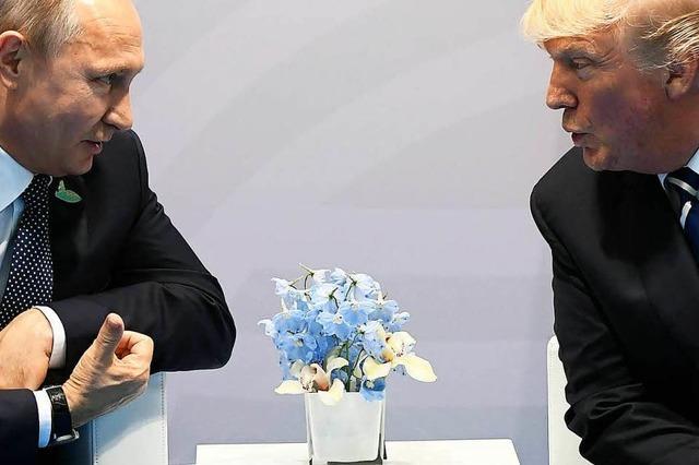 Trump und Putin planen erstes Gipfeltreffen