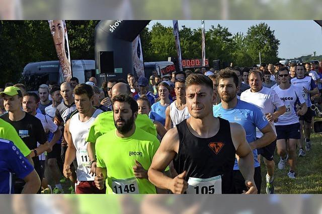 Teilnehmerrekord beim 14. Hoch 3-Lauf