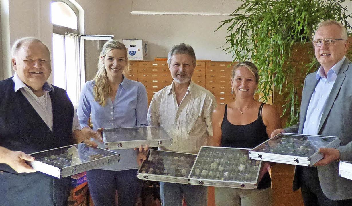 Die Sammlung von  Werner Störk (von li...neralogisch-Petrographischen Labors).   | Foto: Lina Dreher/LGRB