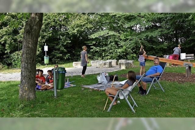 Spielplatz bei der Siedlung soll besser reguliert werden