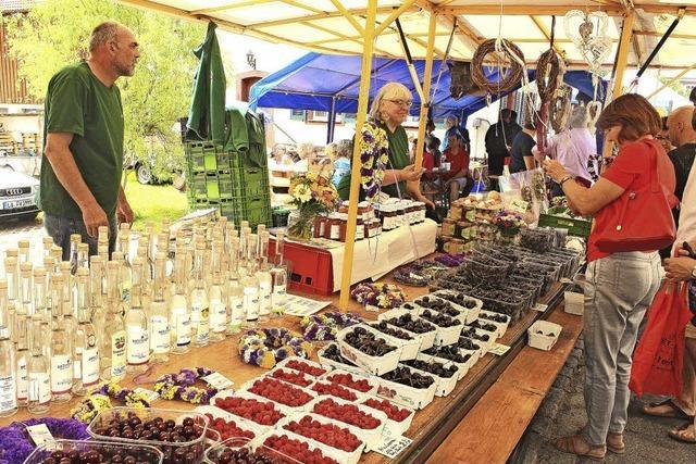 Naturparkmarkt in Tegernau