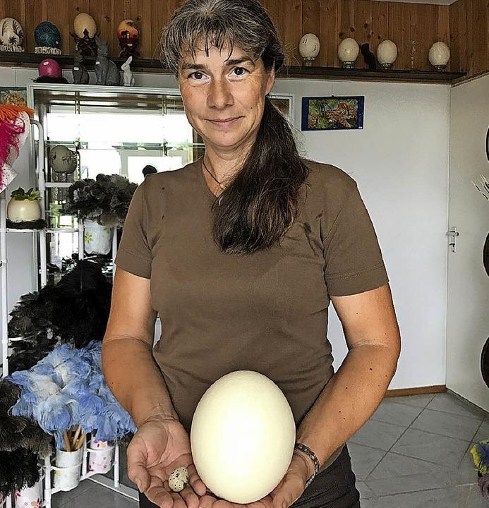 Straußenfarm in Luttingen: Manuela Ebn... ein Wachtelei neben einem Straußenei.    Foto: Nina Witwicki