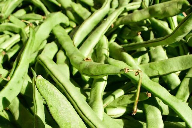 Eiweiß für die Muskeln: die Grüne Bohne