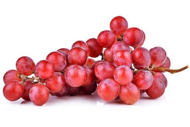 Für Herz und Gefäße: die Weinbeere