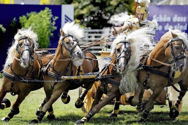 Internationale Pferdemesse in Offenburg
