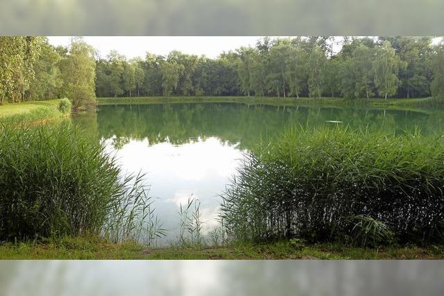 Grünes Idyll bei Altenheim