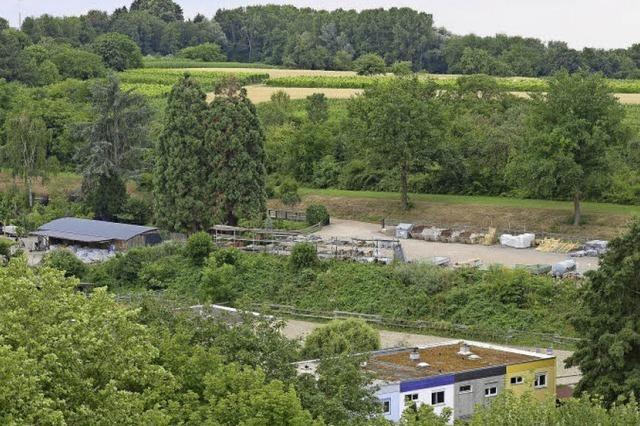 An der Grenze von Lehen und Landwasser könnten auf Baumschule-Gelände Wohnungen entstehen