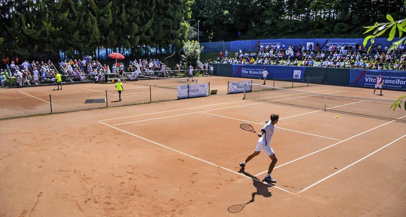 sc freiburg tennis
