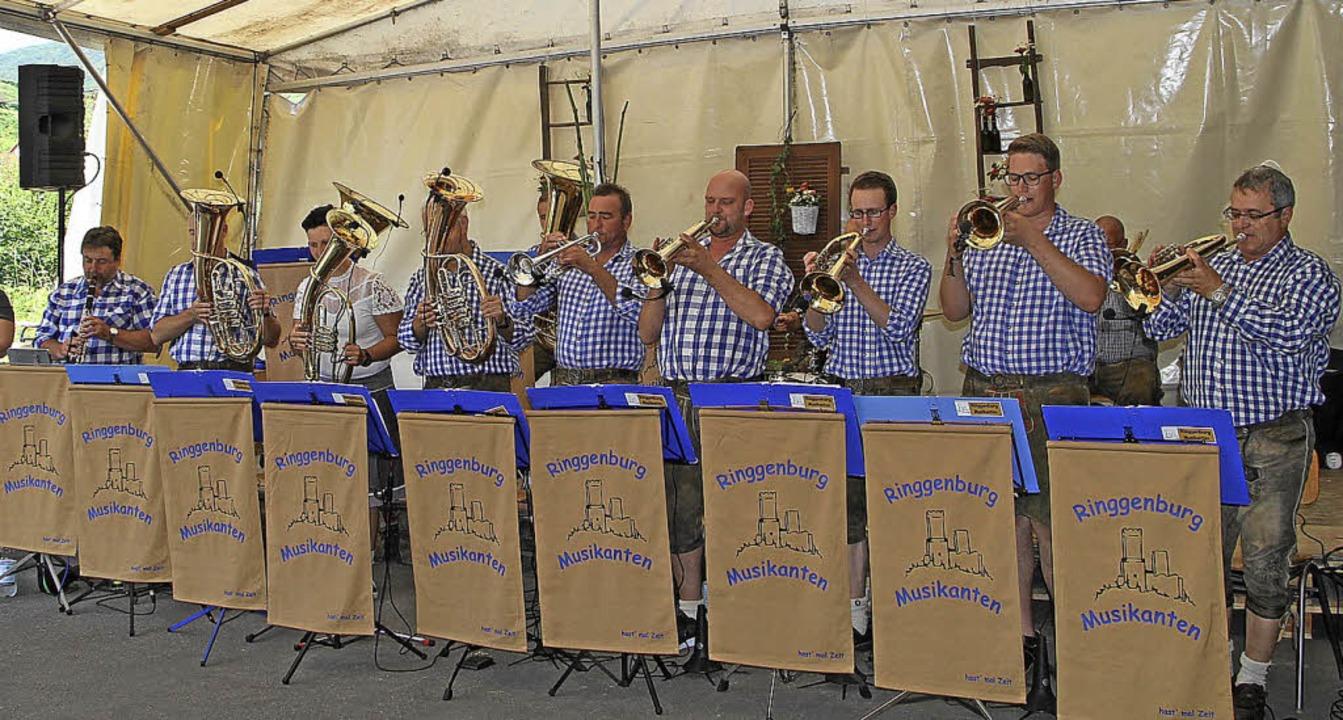 Abwechslungsreiche Blasmusik  bekamen die Festbesucher in Oberbergen zu hören.   | Foto: Herbert trogus