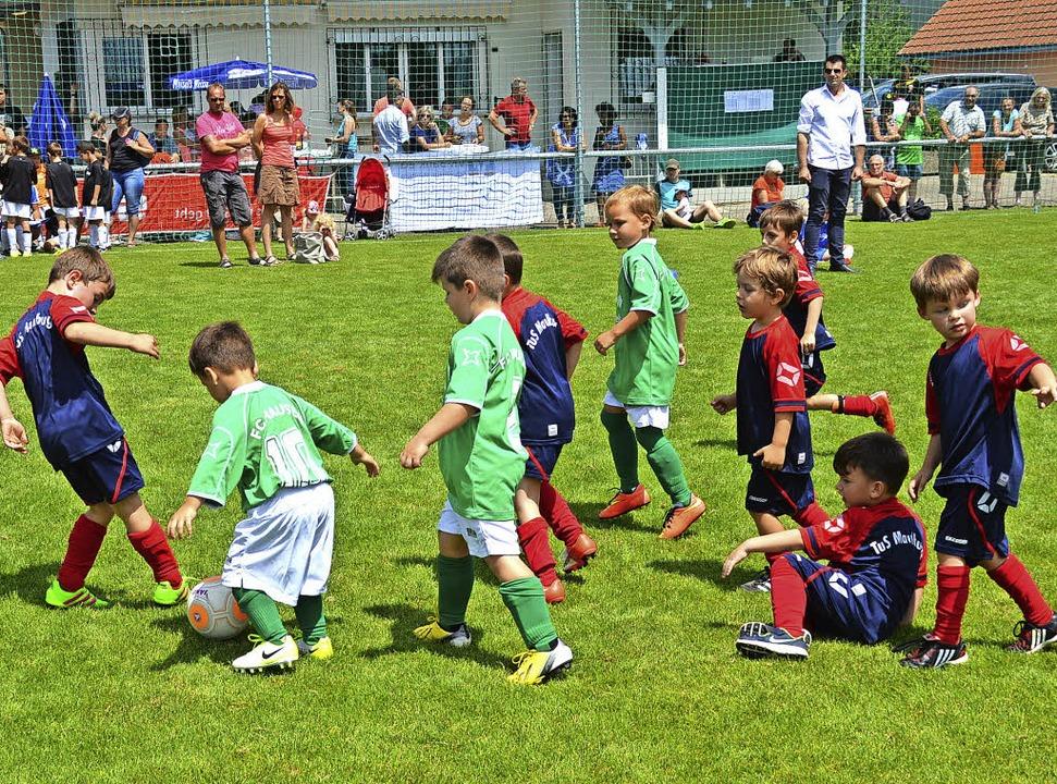 Früh übt sich, wer ein Star werden wil...ngsten Fußballern, den Bambinis,  aus.    Foto: Edgar Steinfelder