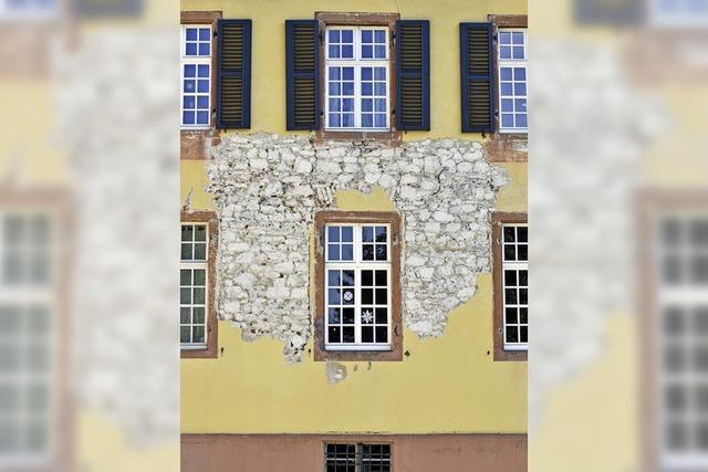 Info-Veranstaltung zu Luxus-Ferienwohnungen im Schloss Ebnet legte den Clinch offen
