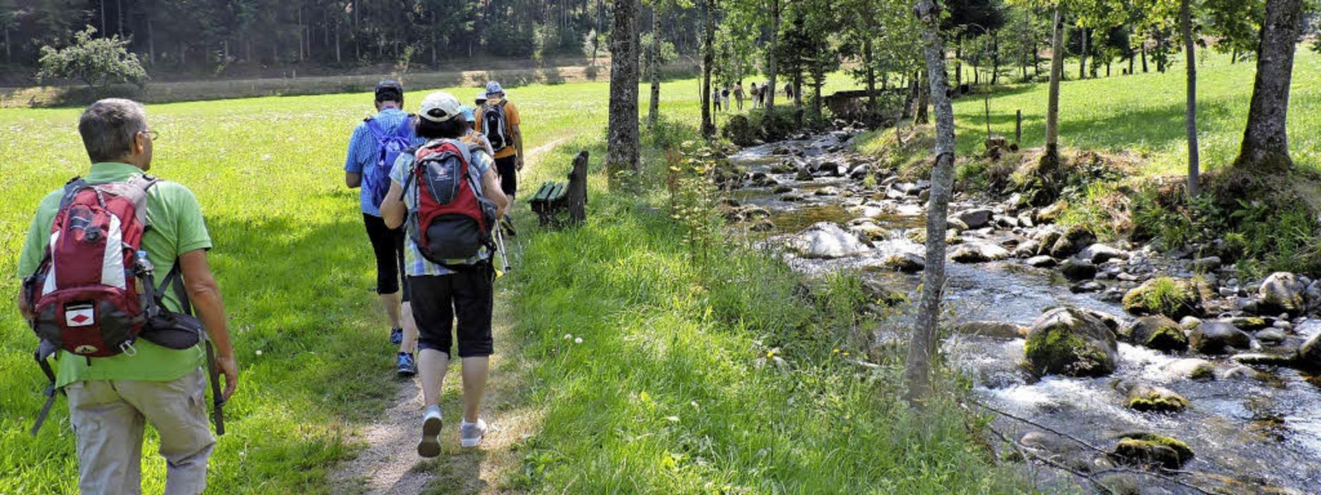 Zwischen Oberprechtal und der Läufersä... Wanderweg direkt an der Elz entlang.     Foto: Fotos: Sylvia Sredniawa