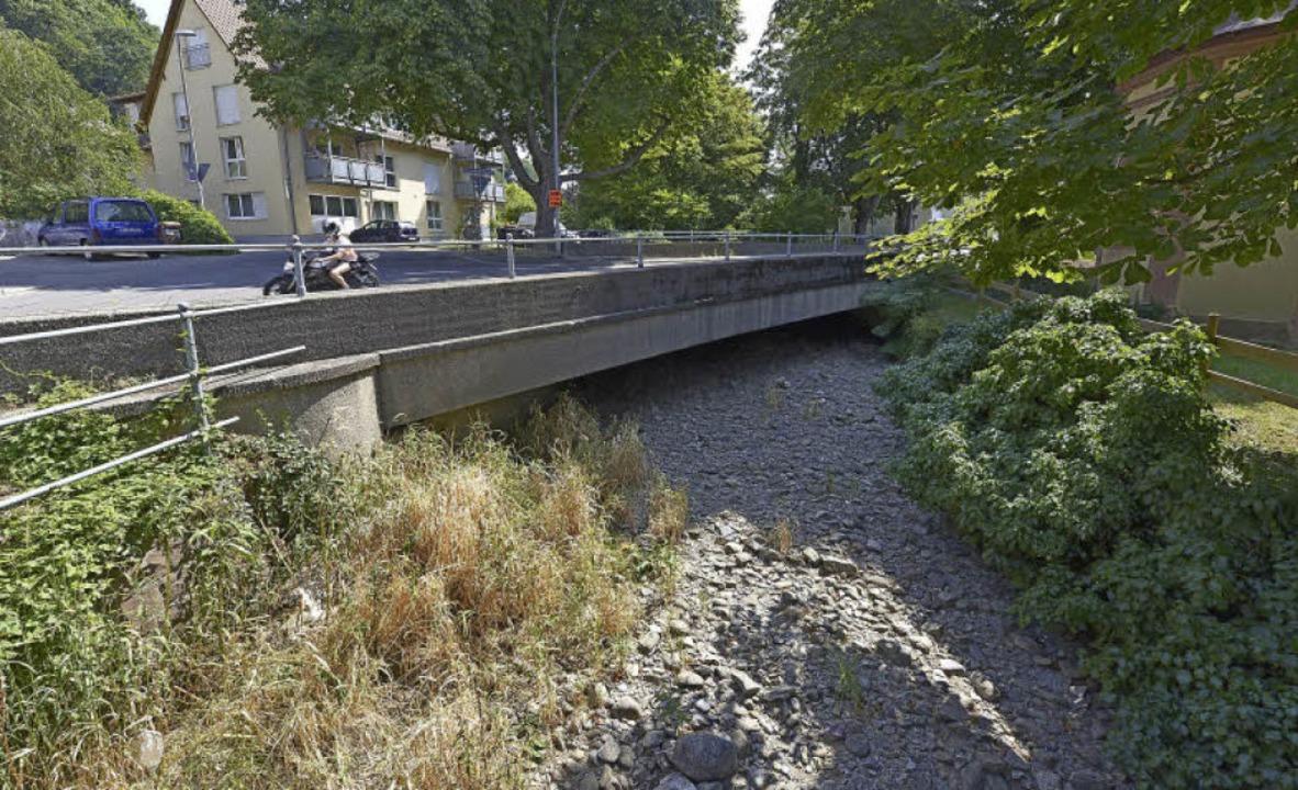 Die Eschbachbrücke muss dringend saniert werden. Das geht ins Geld.  | Foto: ingo SChneider