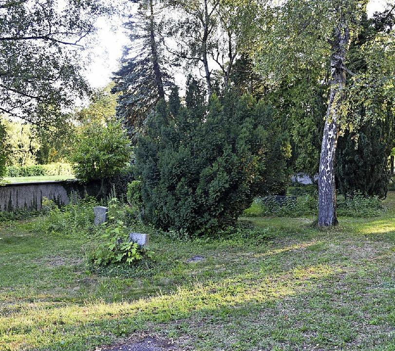 Um die meisten Gräber kümmert sich keiner mehr.   | Foto: Martin Eckert