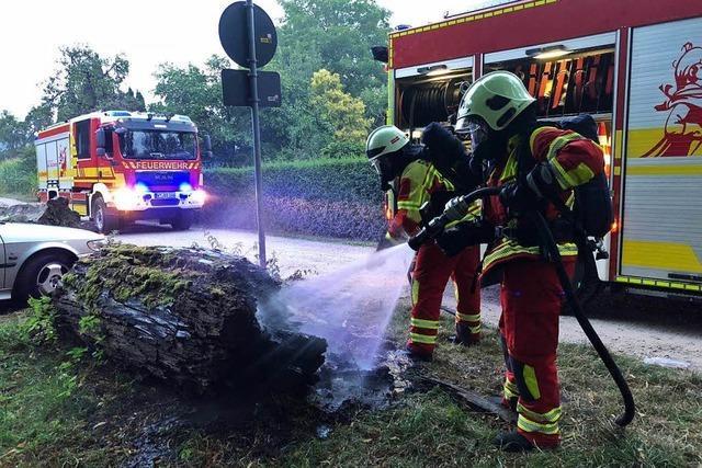 Feuerwehr löscht glimmenden Baumstamm