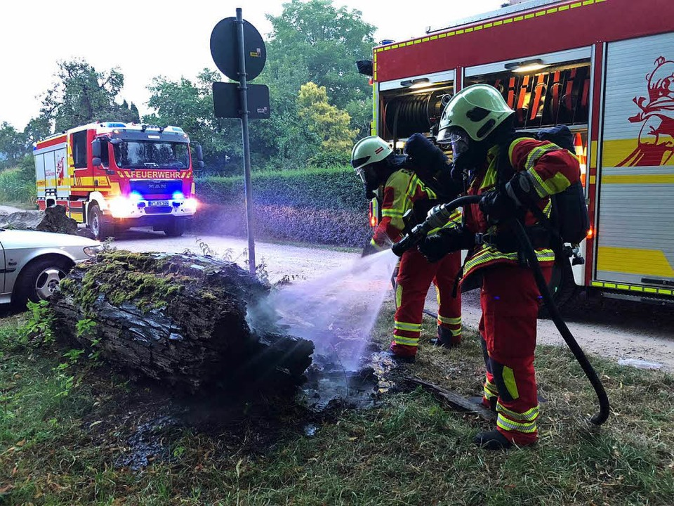 Der Baumstamm wurde gelöscht  | Foto: Feuerwehr Bad Säckingen
