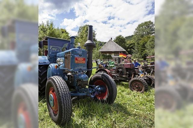 Oldtimer-Traktoren-Treffen im Schwarzwälder Freilichtmuseum Vogtsbauernhof