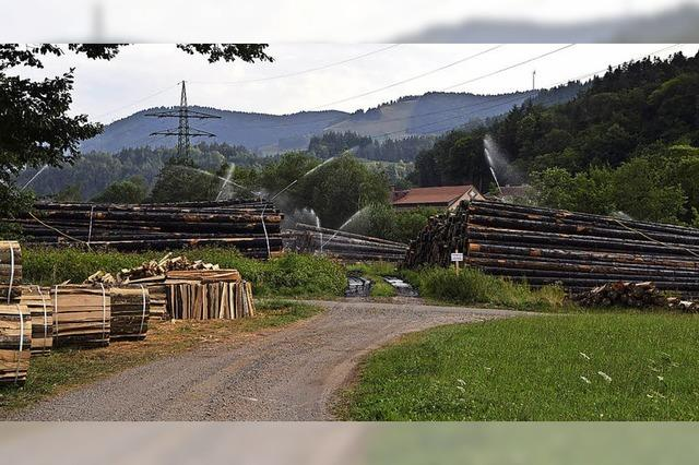 Holzlager wird reaktiviert