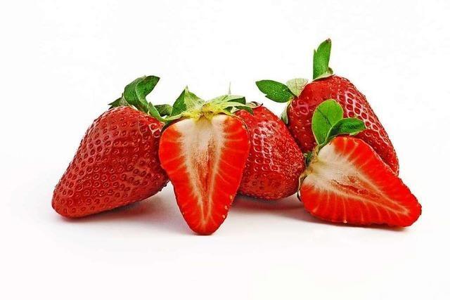 Roter Gefäßpfleger: die Erdbeere
