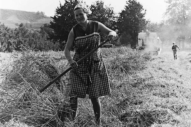 1968: kein gutes Jahr für die Bauern