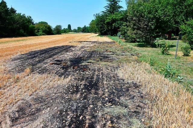 Grenzach-Wyhlen: Gartenfeuer gerät außer Kontrolle