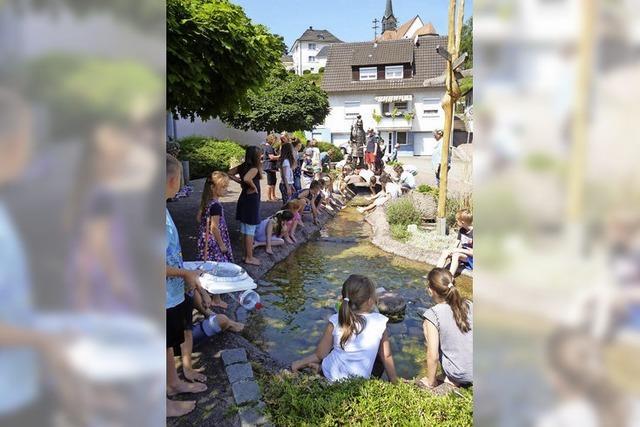 Nordweiler Wasserstraße