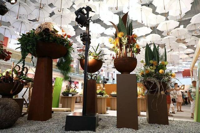 Blumenhalle auf der Landesgartenschau: Wenn Blumen zu Kunst werden