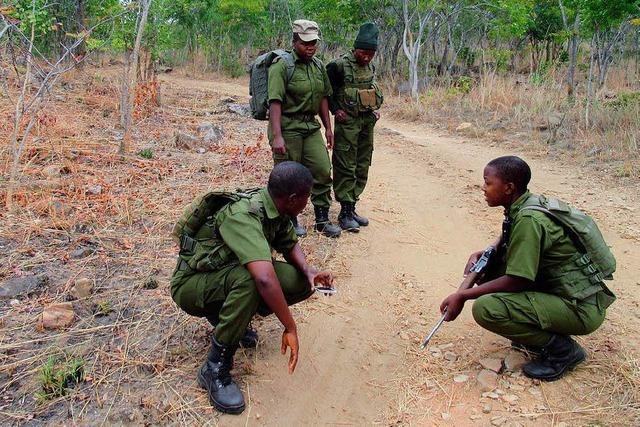 In Simbabwe gehen Frauen auf die Suche nach Wilderern