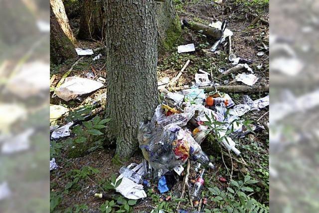 Hausmüll einfach in den Wald geworfen