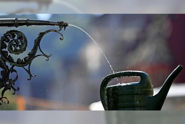 Gießwasser holen ja, aber mit Maßen